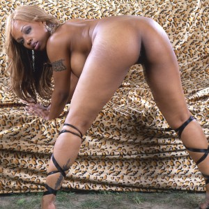 Coco La Ma - I am a 28 year old black beauty and ready to suck your cock.  I am a pole dancer and would love to swivel on your pole!